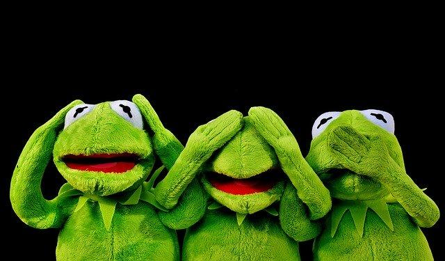 žáby s reakcemi