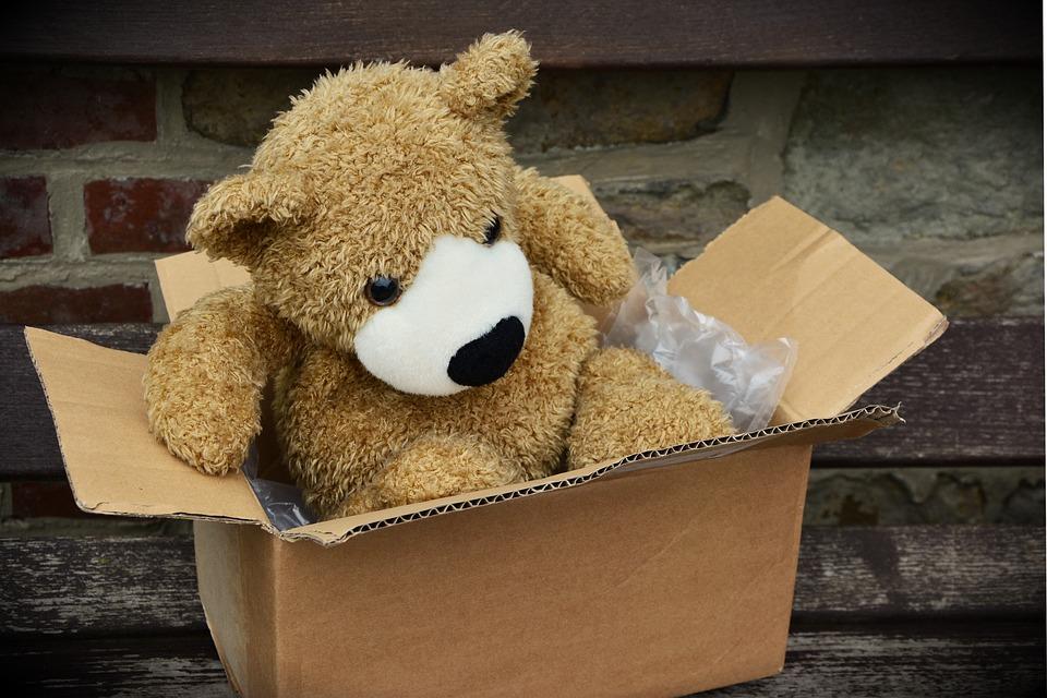 plyšák v krabici